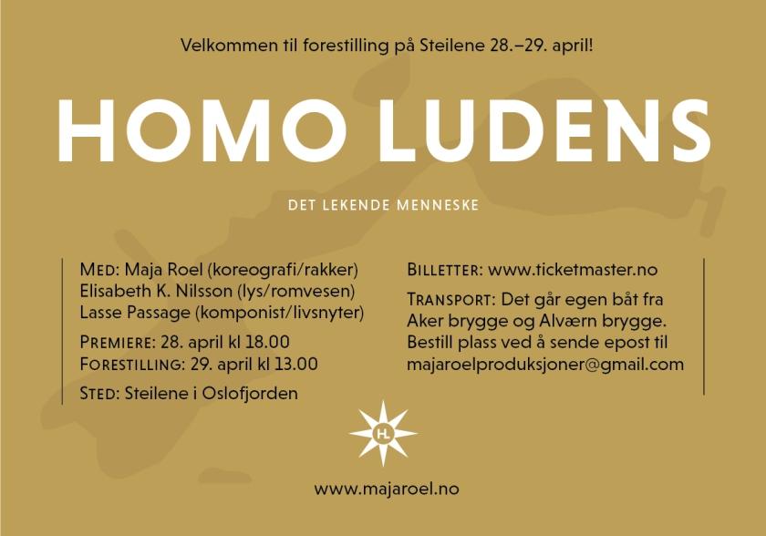 homoludens-flyer2.jpg
